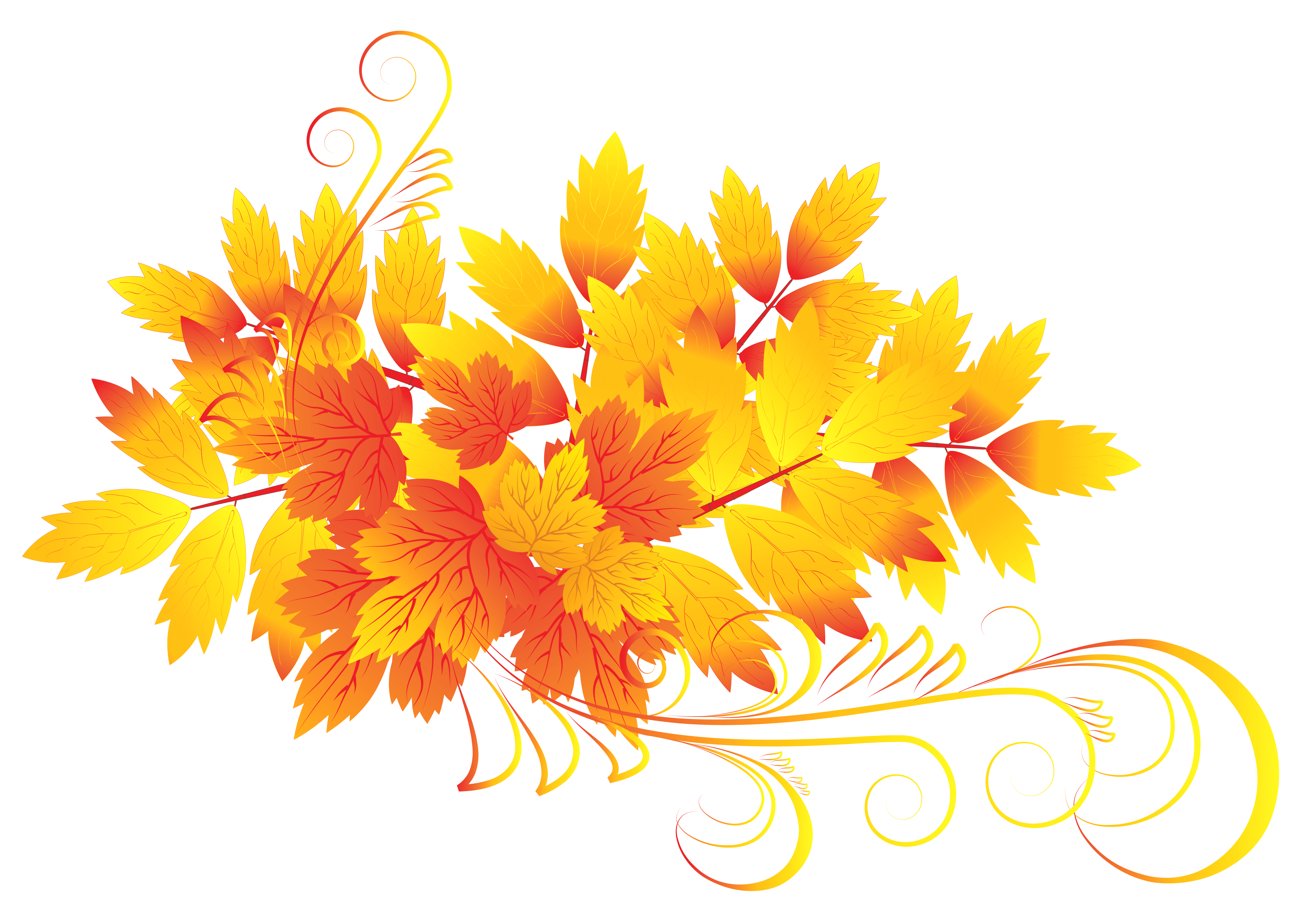 Fall flower clipart banner freeuse library Autumn leaf color Clip art - Autumn Leaves PNG Clipart 6424*4450 ... banner freeuse library