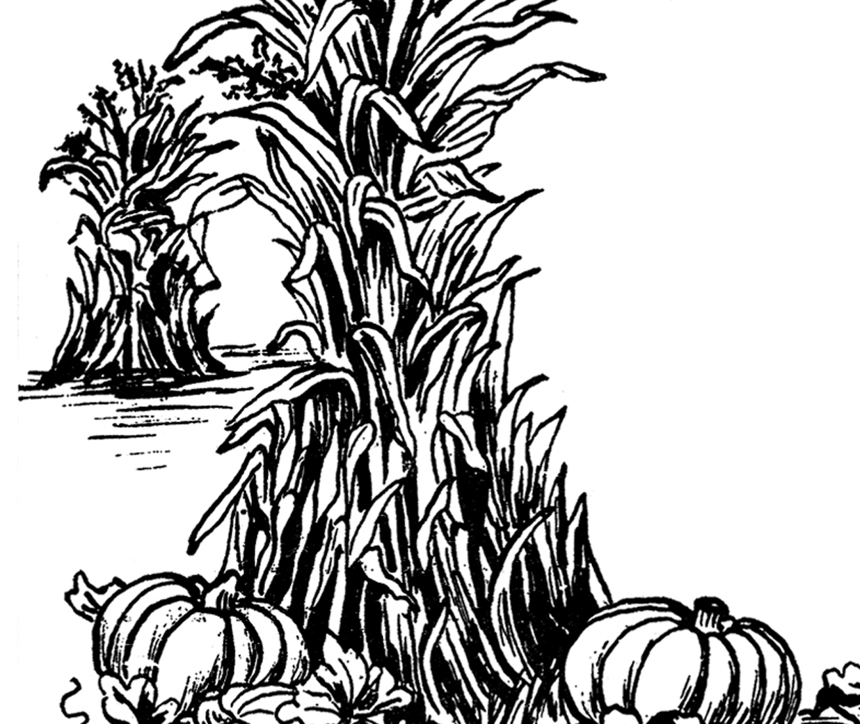 Fall harvest clipart black and white free png transparent library Harvest clipart black and white 8 » Clipart Station png transparent library