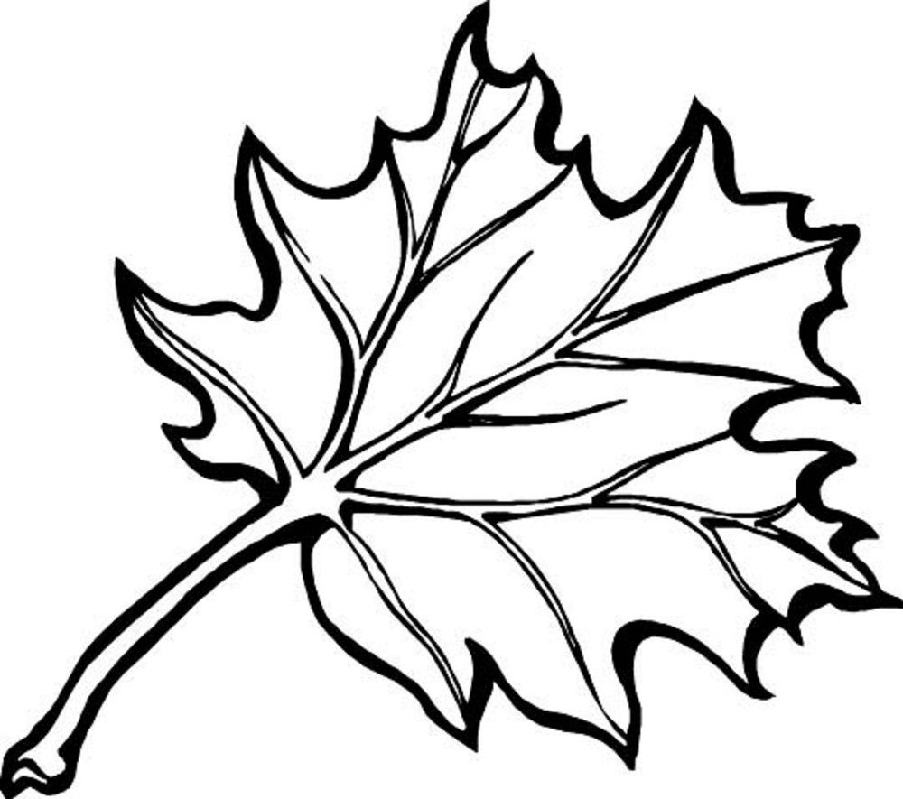 Fall leaves clipart coloring pages black and white download coloring ~ Leaf Coloring Pages Printable For Kids Pinterest Free ... black and white download