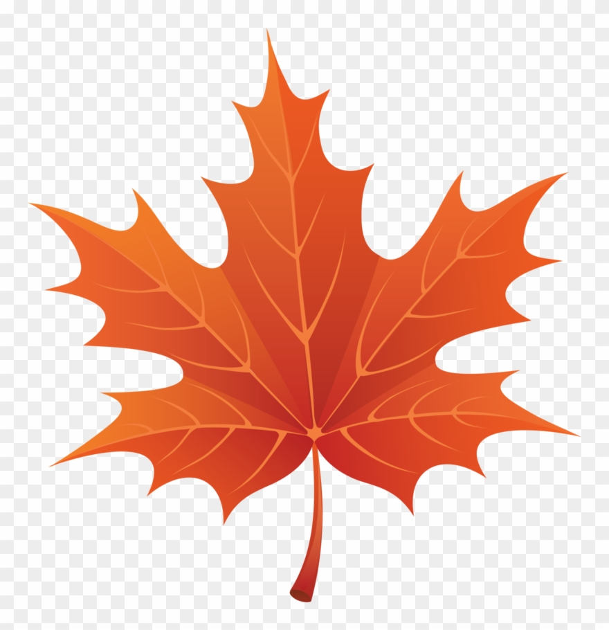 Fall leaves clipart png vector royalty free stock Autumn Fall Leaves Clip Art P - Autumn Leaf Clipart Png Transparent ... vector royalty free stock