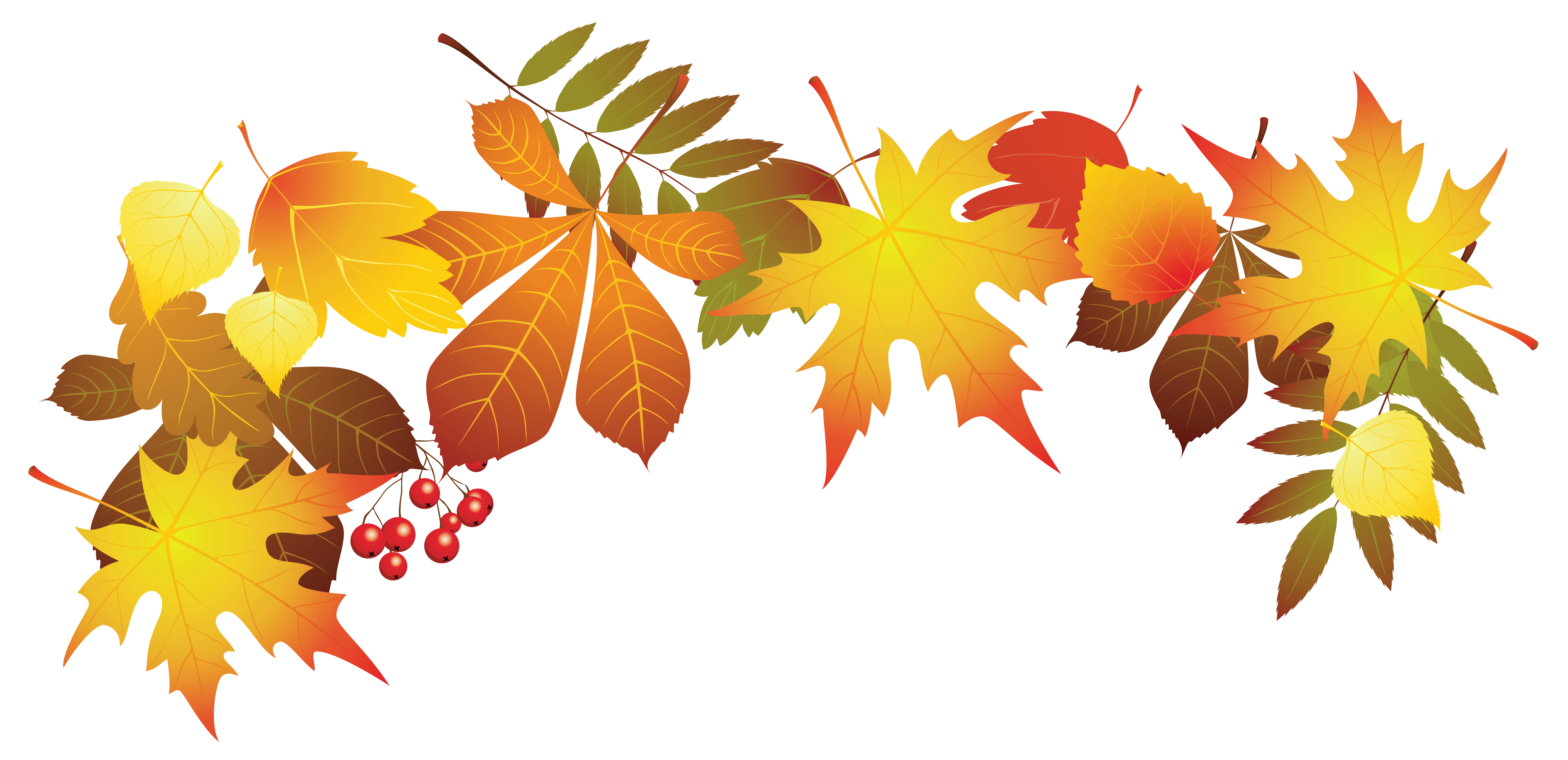 Fall leaves clipart png jpg black and white stock Autumn leaf color Clip art - Transparent Autumn Leaves Decoration ... jpg black and white stock