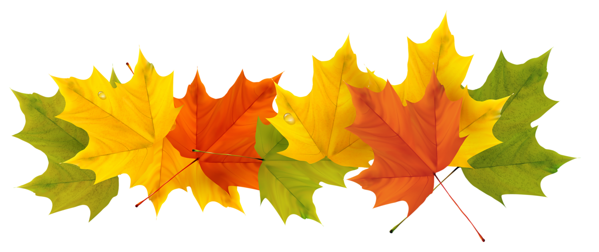 Fall leaves clipart transparent stock Transparent Fall Leaves PNG Picture | Gallery Yopriceville - High ... stock