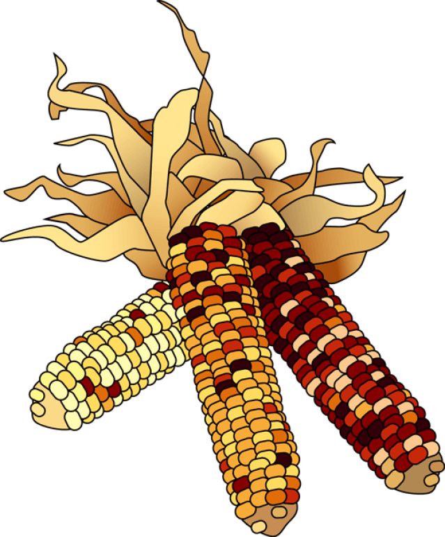Fall pumpkin and corn clipart image library stock 28+ Collection of November Clipart Transparent | High quality, free ... image library stock