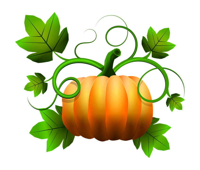 Pumpkin patch clipart free black and white transparent download Collection of November Fall Cliparts | Buy any image and use it for ... transparent download