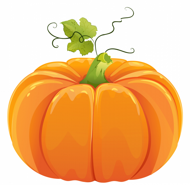 Preschool pumpkin clipart vector free library Pumpkin Investigation – Hay Springs Public School vector free library