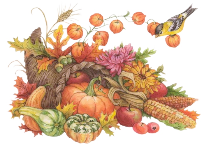 Fall scene clipart hay corn stalk pumpkin banner black and white stock http://mafoirfouille.m.a.pic.centerblog.net/wrmzqro9.png | ART ... banner black and white stock
