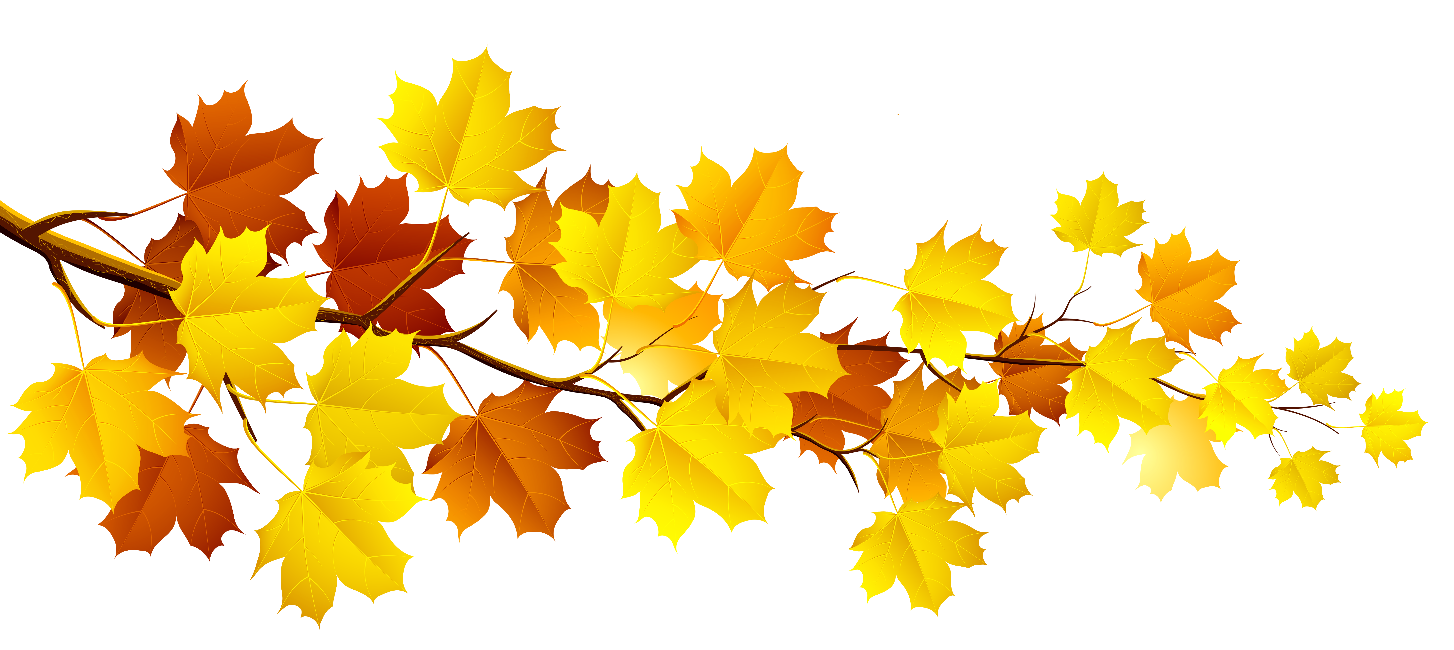 Fall tree branch clipart. With autumn leaves png