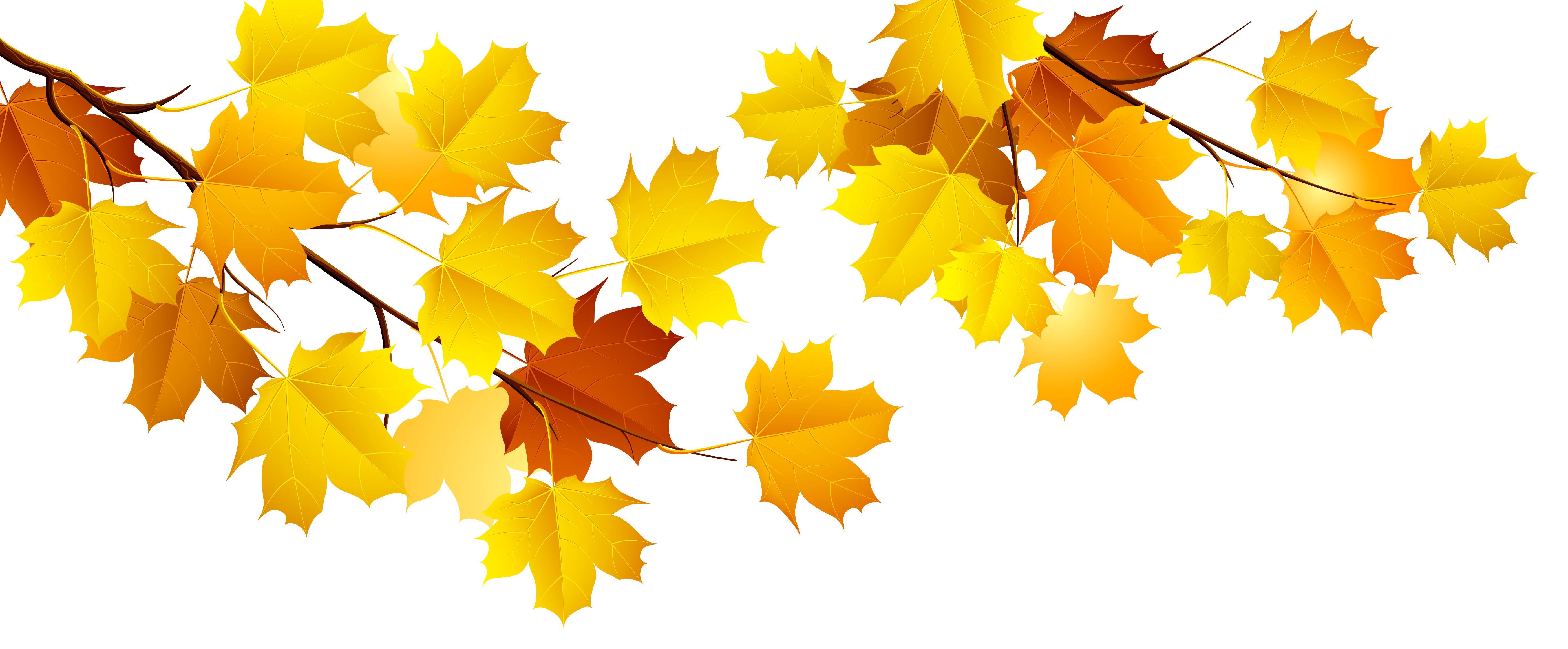 Autumn png gallery yopriceville. Fall tree branch clipart