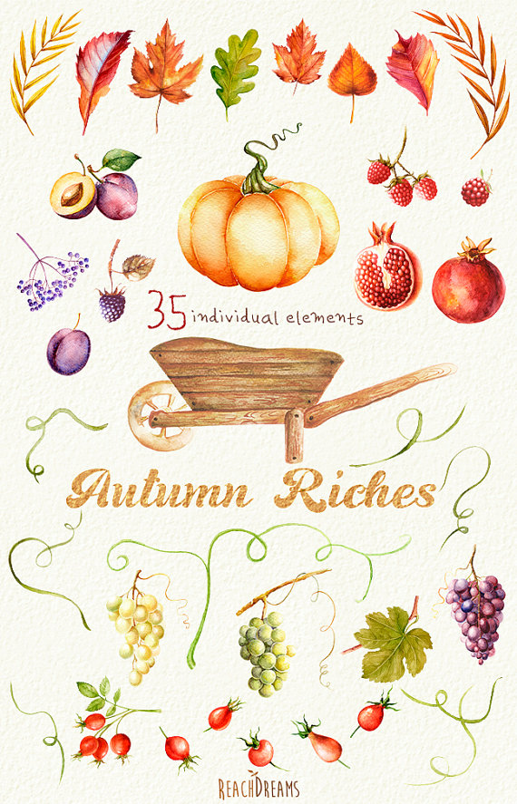 Fall watercolor clipart image freeuse library Autumn Harvest Watercolor clipart. Fall, Halloween, Pumpkin, Leaves ... image freeuse library