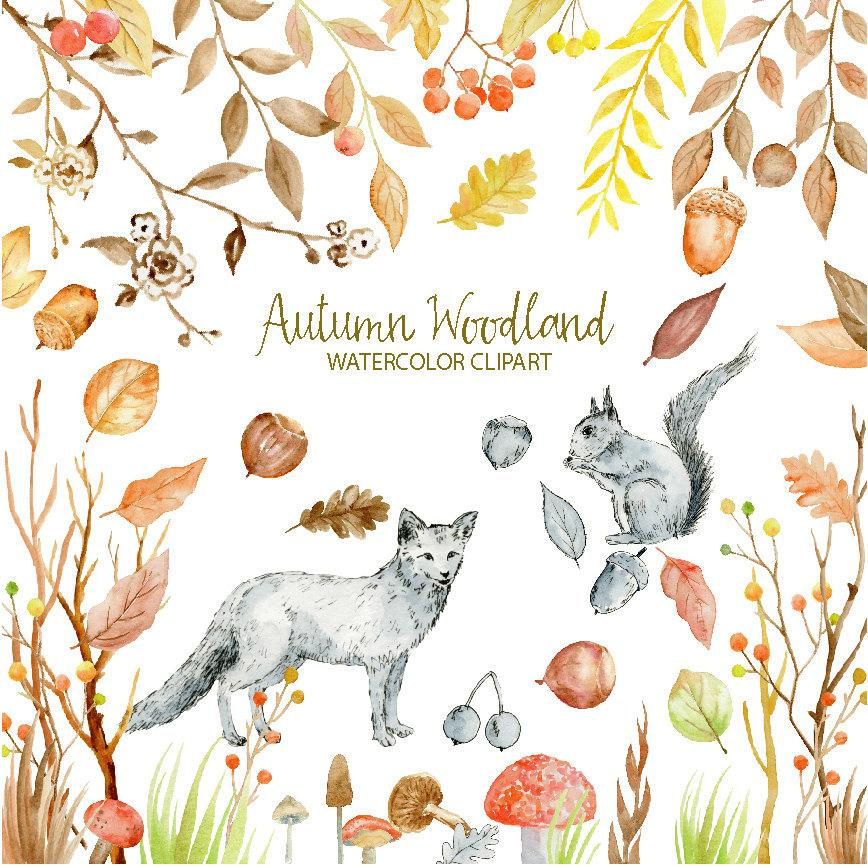 Fall watercolor clipart image freeuse stock Watercolor Clipart - Autumn Woodland, fox, squirrel, autumn leaves,  berries, nuts and mushrooms for instant download image freeuse stock