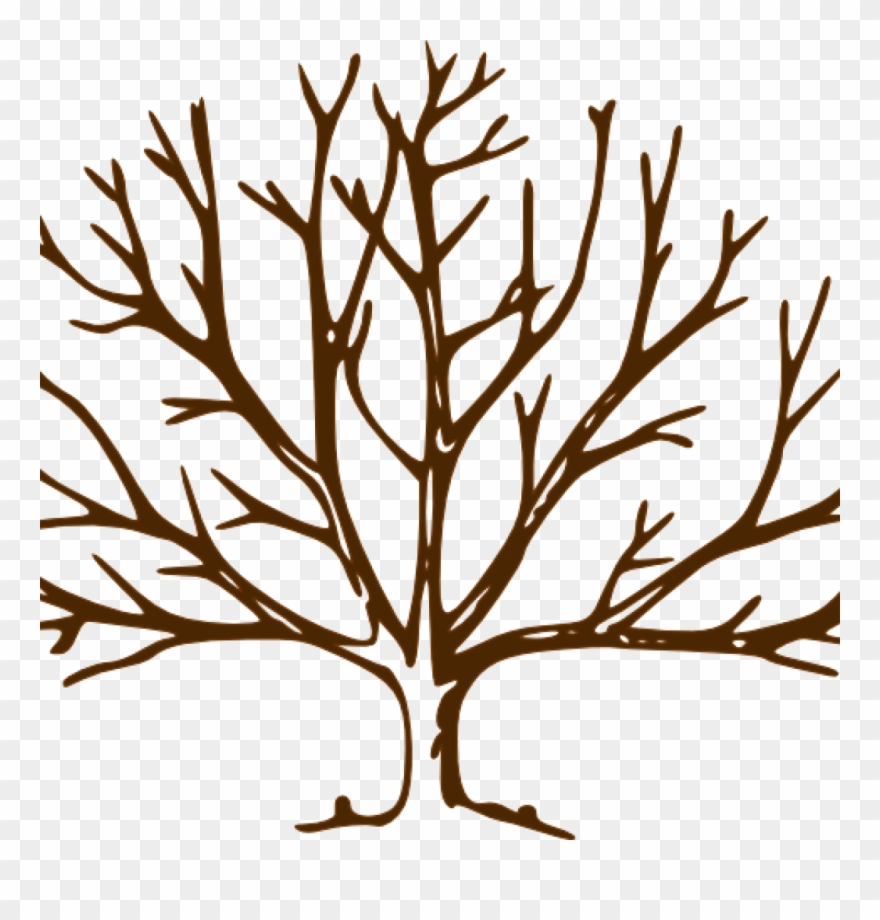 Fall winter cliparts png Fall Clipart Bare Fall Tree - Winter Trees To Draw - Png Download ... png