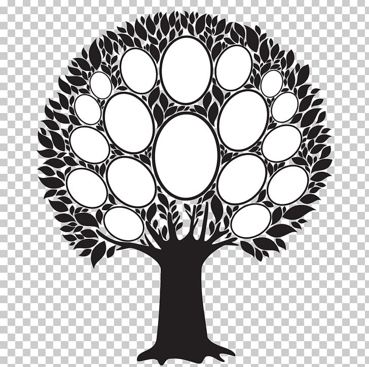 Family picture framed clipart black and white picture royalty free stock Frames Family Tree PNG, Clipart, Black And White, Branch, Circle ... picture royalty free stock