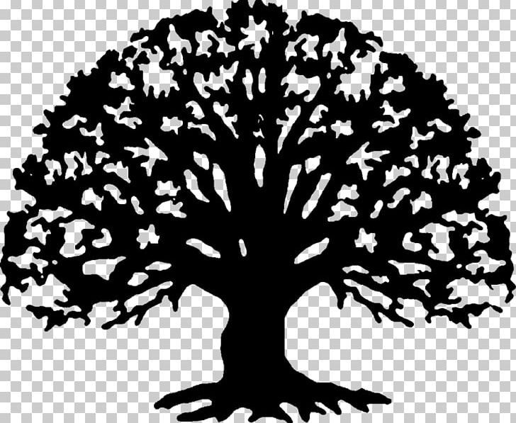 Family reunion tree black and white clipart picture royalty free library Family Reunion Family Tree PNG, Clipart, Art, Black And White ... picture royalty free library