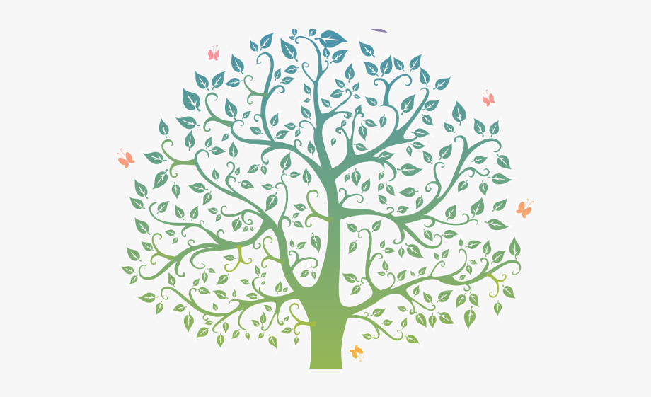 Family tree clipart pictures clipart download Branch Clipart Family Tree - Family Tree Clipart Png #128606 - Free ... clipart download
