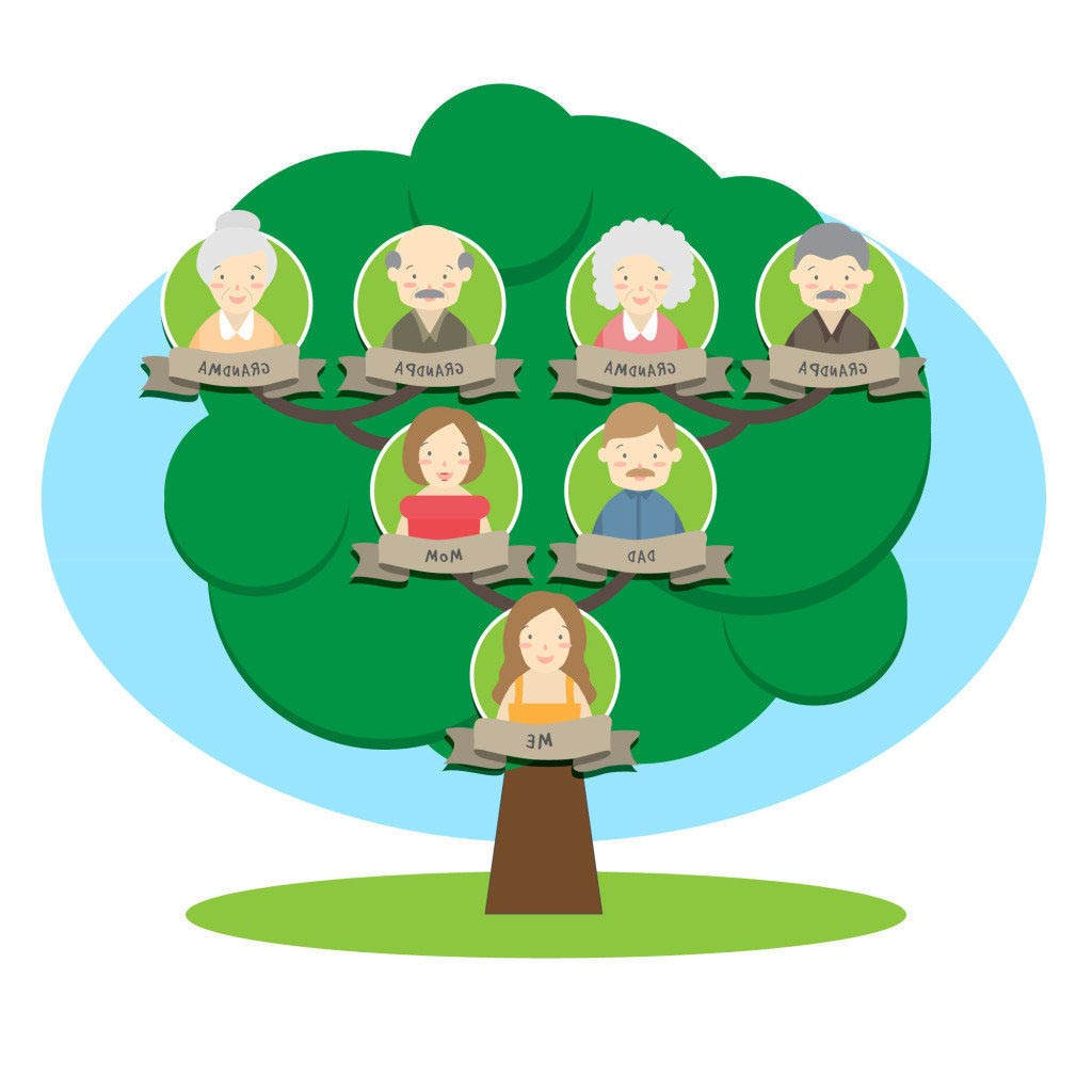 Family tree clipart pictures royalty free stock Inspirational Family Tree Clipart Sketch Green Vector - Clipart1001 ... royalty free stock