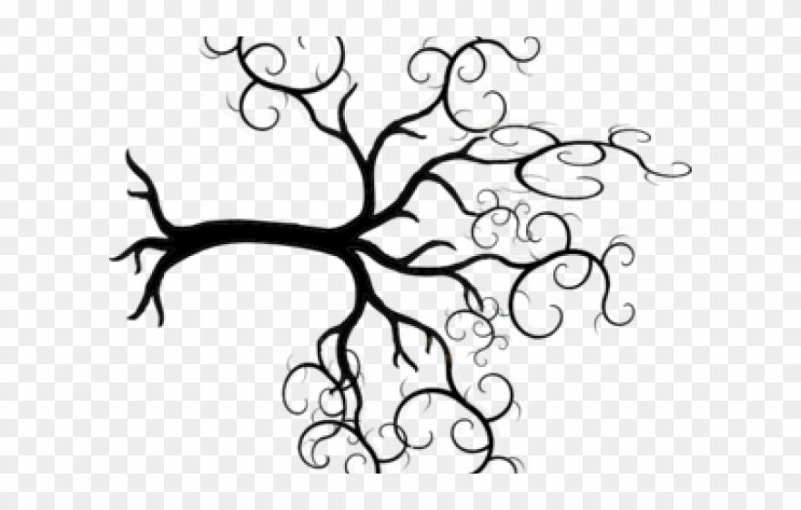 Family tree clipart with curly branches svg banner library download Roots Clipart Curly Tree - Tree Of Life Transparent - Png Download ... banner library download