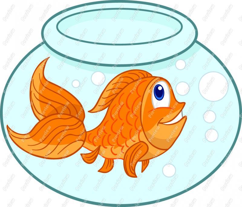 Fancy goldfish clipart picture Goldfish clipart - ClipartFest picture