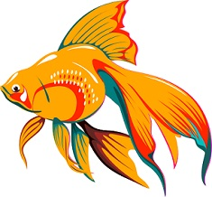 Fancy goldfish clipart jpg royalty free stock Free Goldfish Clipart jpg royalty free stock