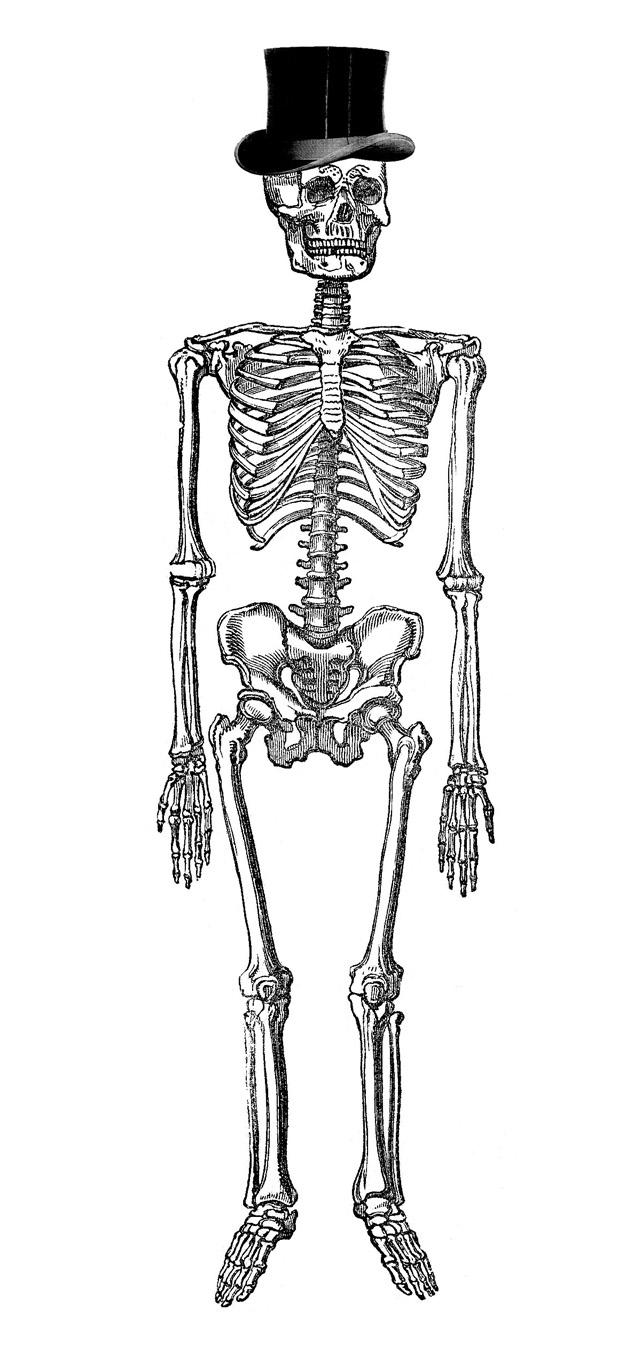 Fancy people clipart graphic transparent library Vintage Halloween Clip Art - Fancy Skeleton Man - The Graphics Fairy graphic transparent library