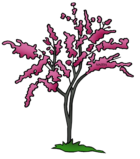 Fancy tree clipart svg stock United States Clip Art by Phillip Martin, State Tree of Oklahoma ... svg stock