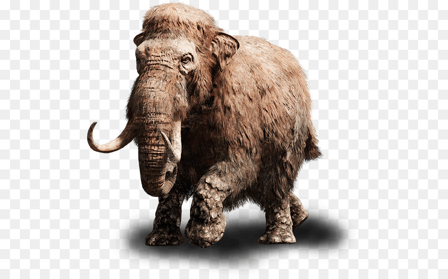 Far cry primal clipart png stock Indian Elephant clipart - Elephant, Wildlife, Ox, transparent clip art png stock