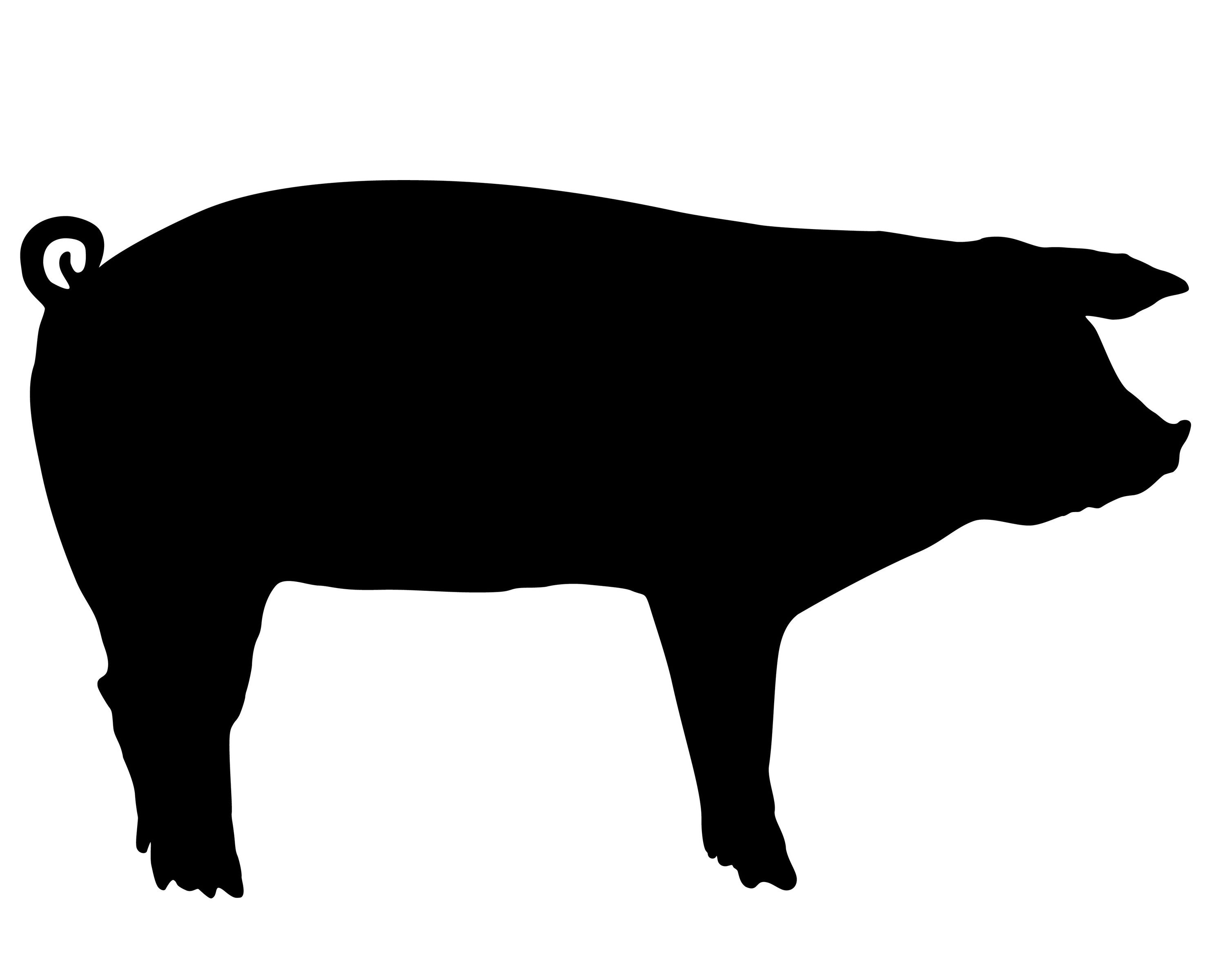Pig silhouette clipart