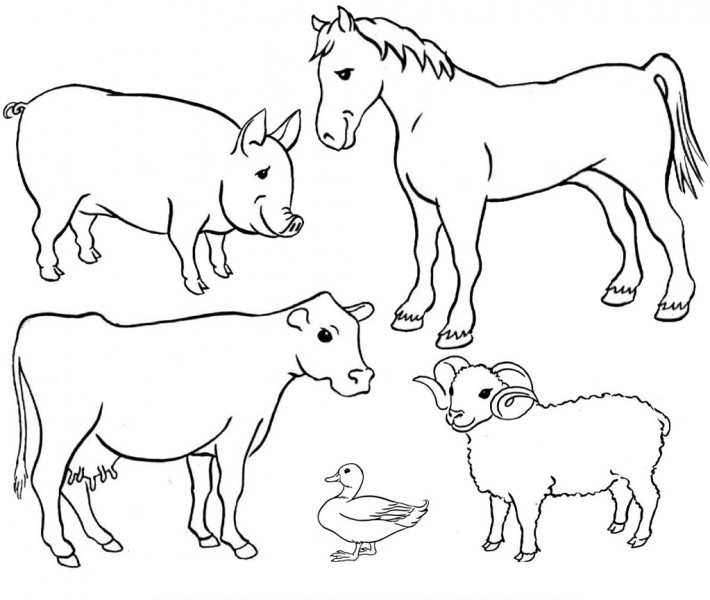 Farm clipart black and white free svg transparent library Farm Cliparts Black   Free Download Clip Art   Free Clip Art   On ... svg transparent library