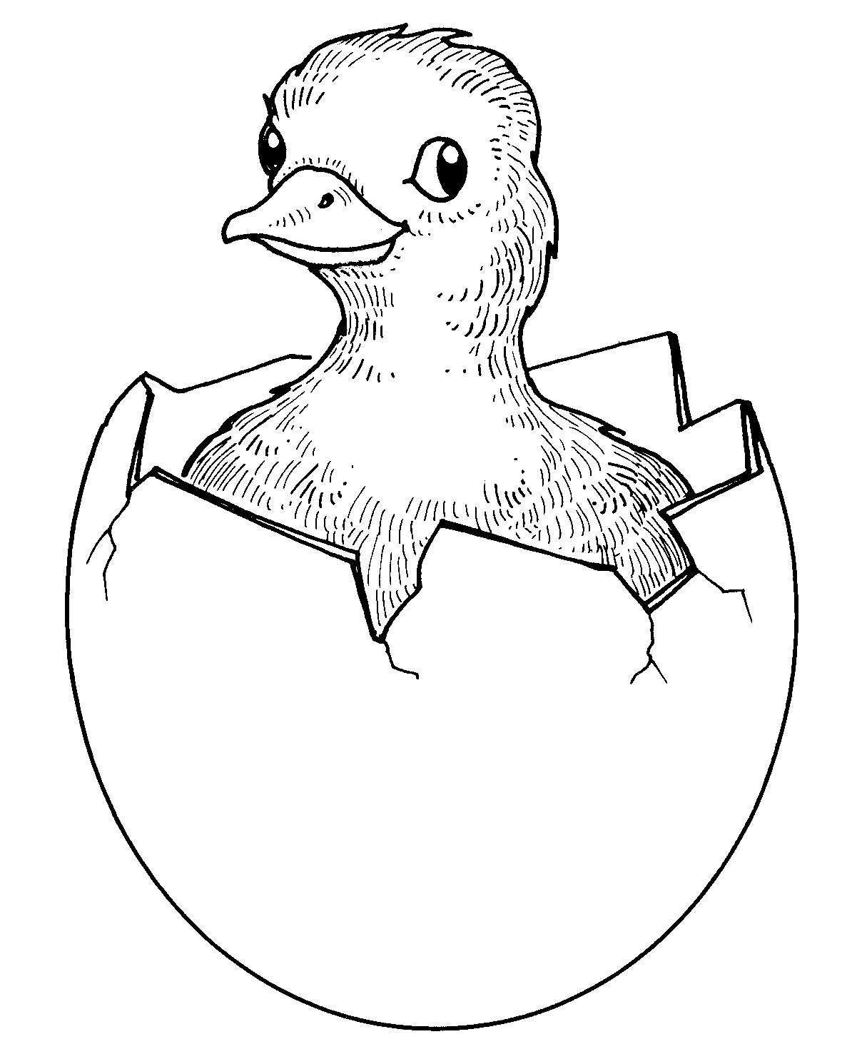 Farm animals clipart black and white duck vector royalty free library Farm Clipart Black And White | Free download best Farm Clipart Black ... vector royalty free library