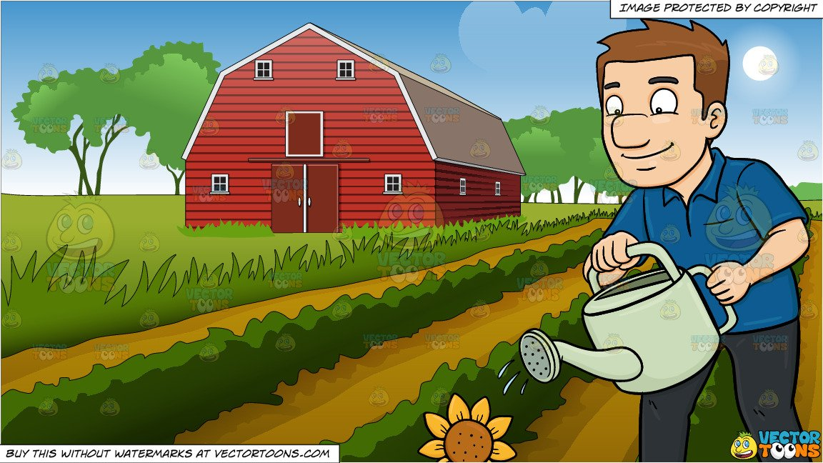 Farming field clipart banner library library A Man Watering A Sunflower and Farm Field And Barn Background banner library library