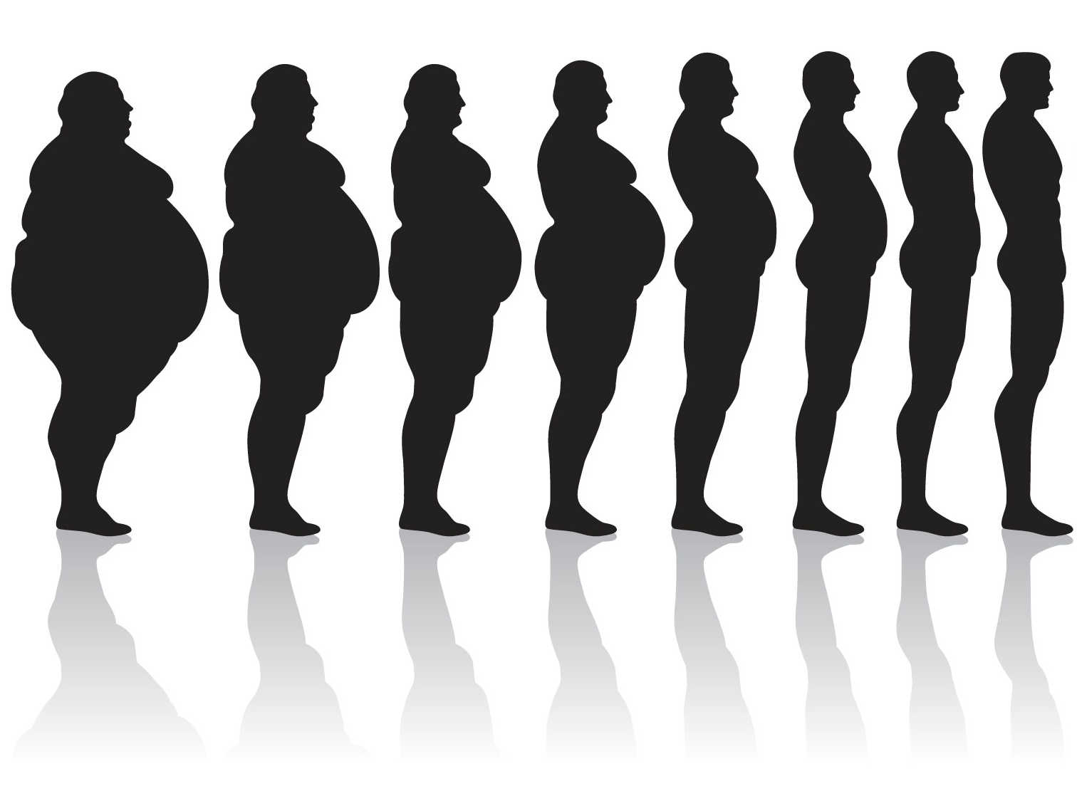 Fat vs thin clipart vector library library Skinny Fat Of People Clipart - Clipart Kid vector library library