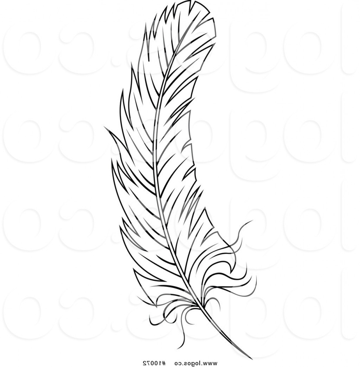 Feather clipart images black and white image transparent stock Best Of Vector Feather Clipart Black And White | KoolGadgetz image transparent stock