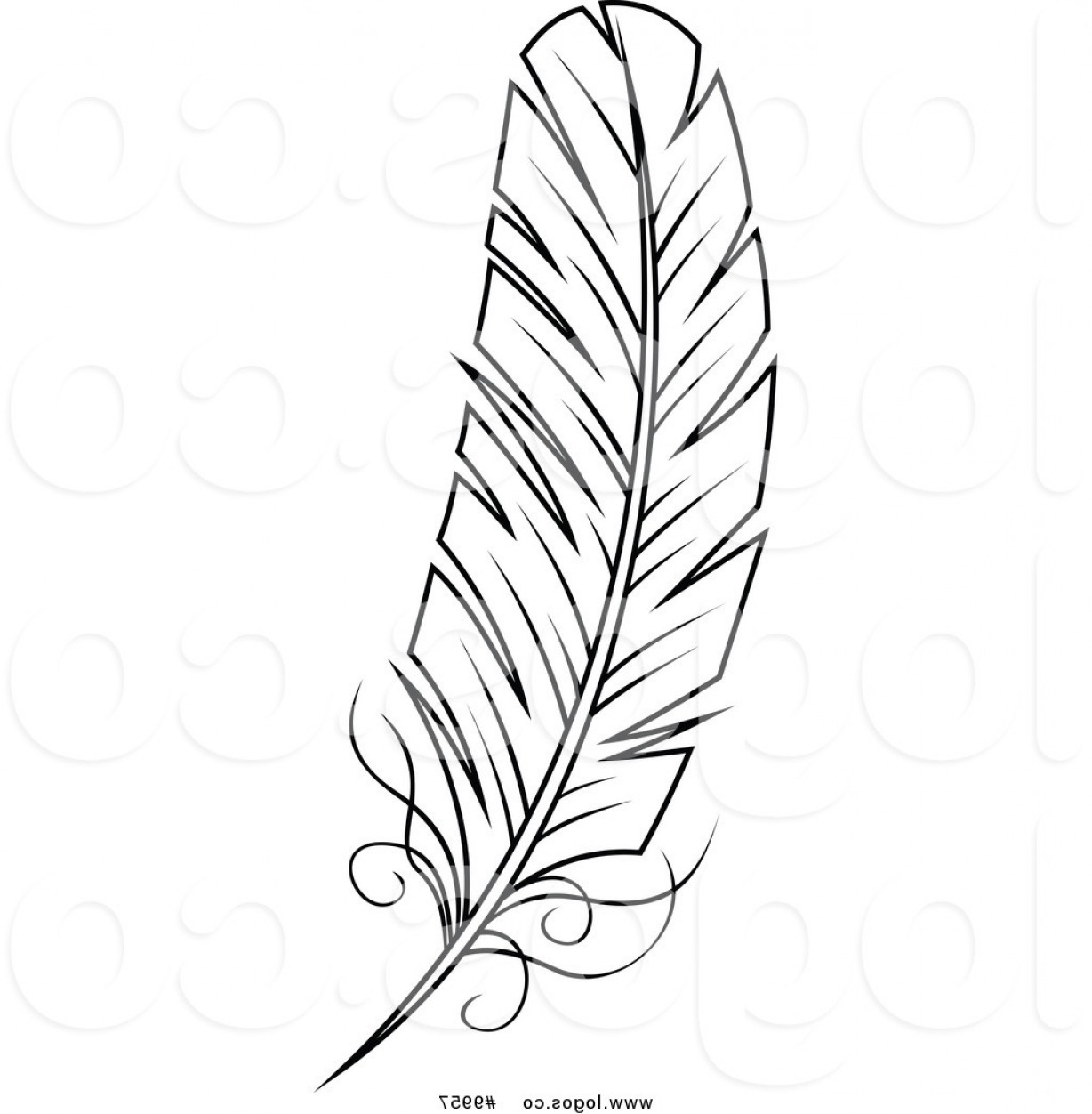 Feather clipart images black and white picture transparent stock Royalty Free Clip Art Vector Black And White Feather Logo By Vector ... picture transparent stock