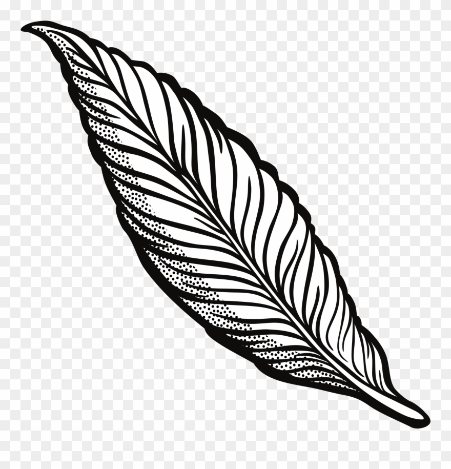 Feather clipart black and white free picture library stock Clipart Feather Lineart 45 Anniversary Clip Art Free - Transparent ... picture library stock