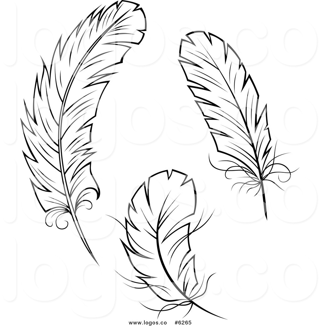 Feather clipart images black and white vector free library Feather clipart black and white Elegant Feather clip art to ... vector free library