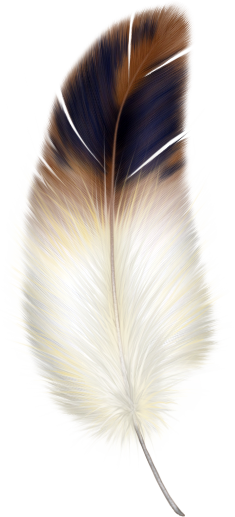Feather crown clipart. Good morning everyone wasn