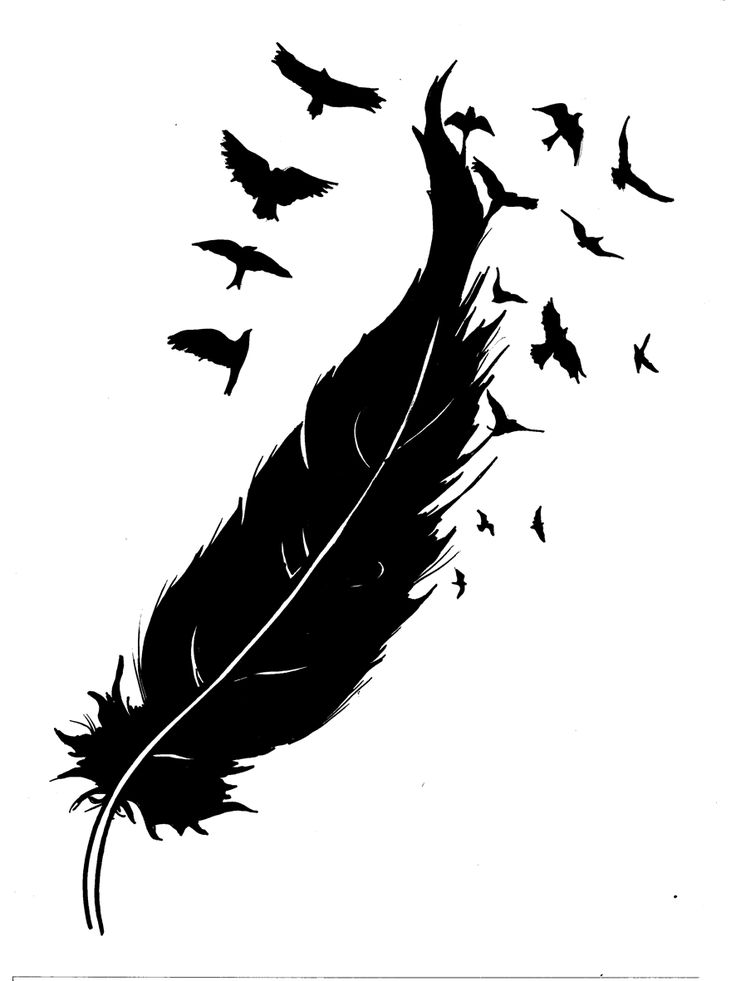 Feather turning into birds clipart png download 17 Best images about Feathers on Pinterest | Feather tattoo design ... png download