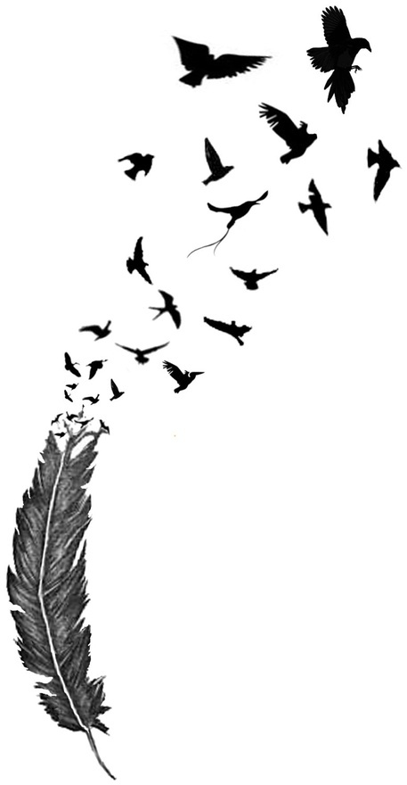 Feather turning into birds clipart graphic free download Feather turning into birds clipart - ClipartFest graphic free download