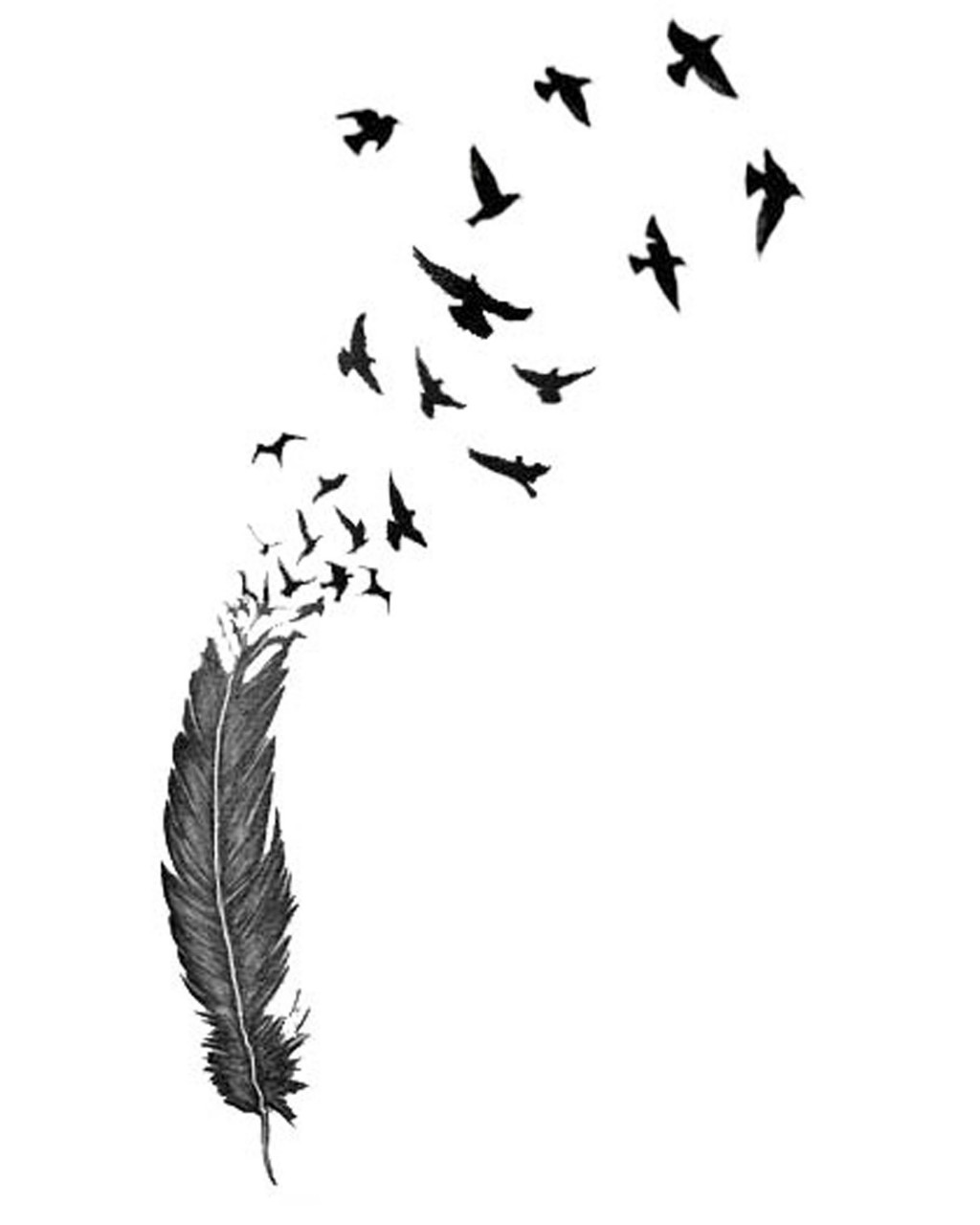 Feather turning into birds clipart png Flying birds tattoo clipart - ClipartFest png