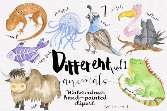 February clipart images animals freeuse stock Watercolor Animals Clipart Hand-painted Clipart by ATArtDigital freeuse stock