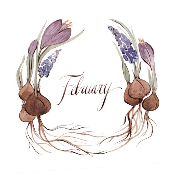 February nature clipart images image free download Kelsey Garrity-Riley Illustration: February. | typography & design ... image free download