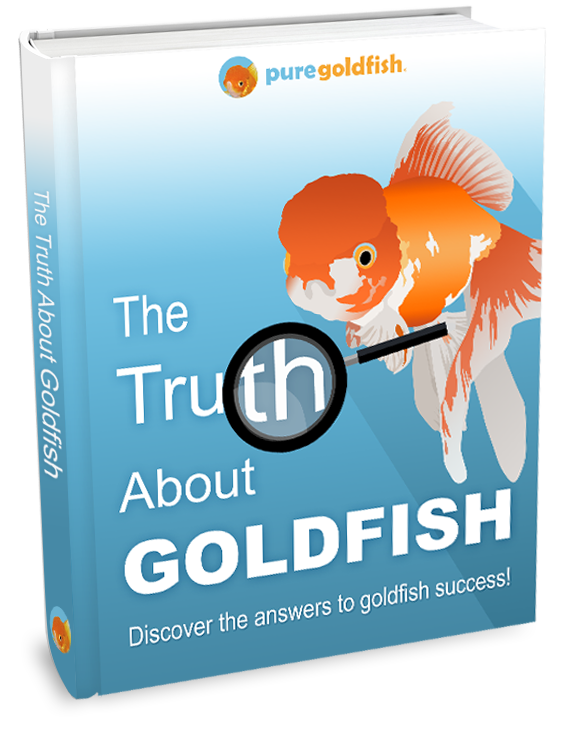 Feed the fish clipart svg free The Best 3 Goldfish Foods to Feed Your Fish (Nutrition Guide + Reviews) svg free