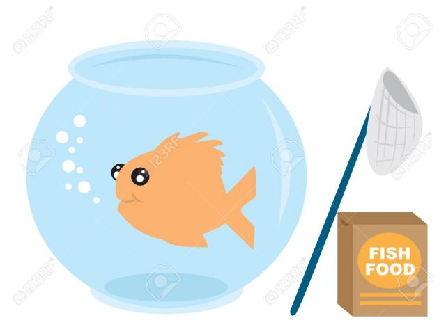 Feeder fish clipart graphic library download Free Gold Fish Clipart, Download Free Clip Art on Owips.com graphic library download