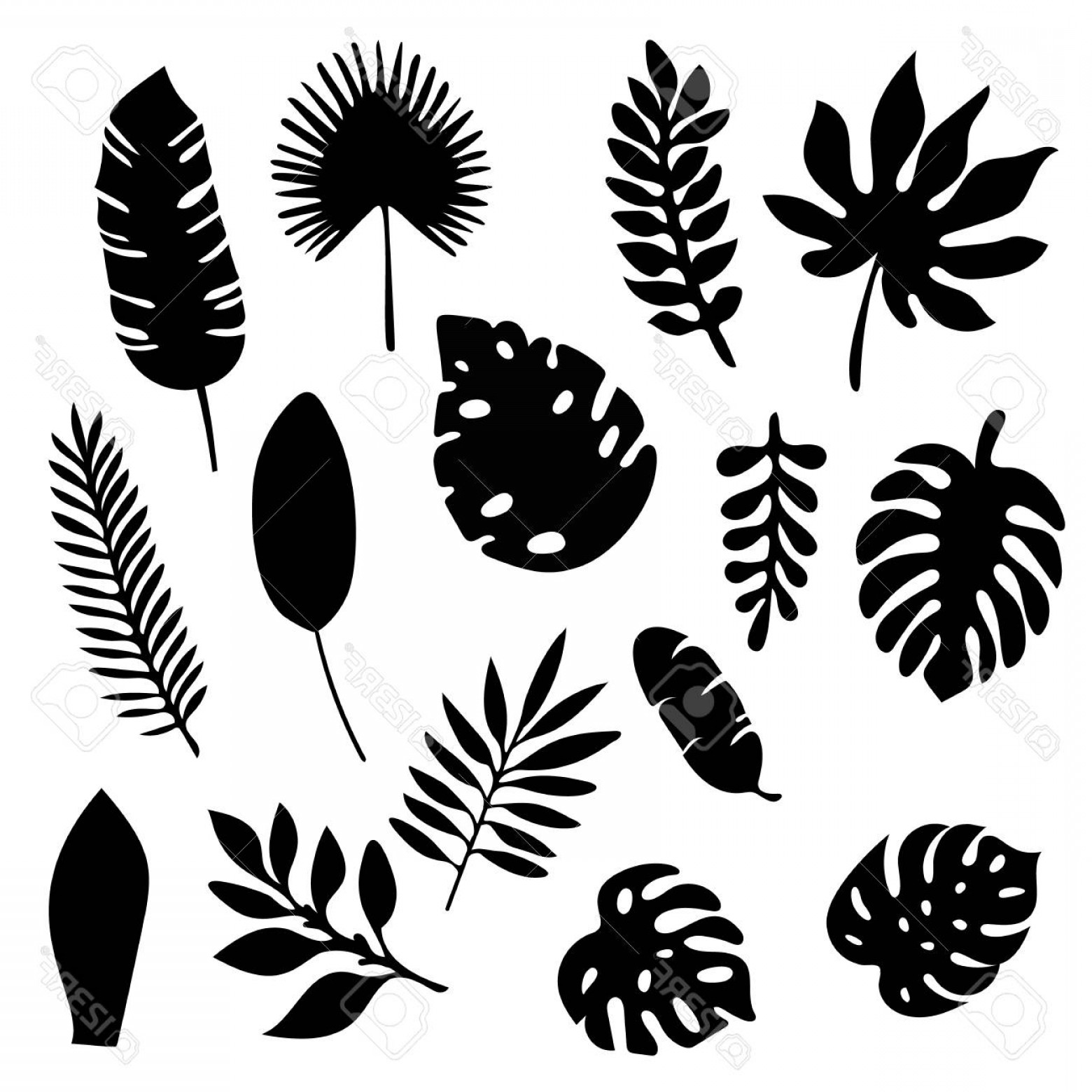 Fern silhouette clipart clip transparent library Vector Leaf Silhouette | SOIDERGI clip transparent library