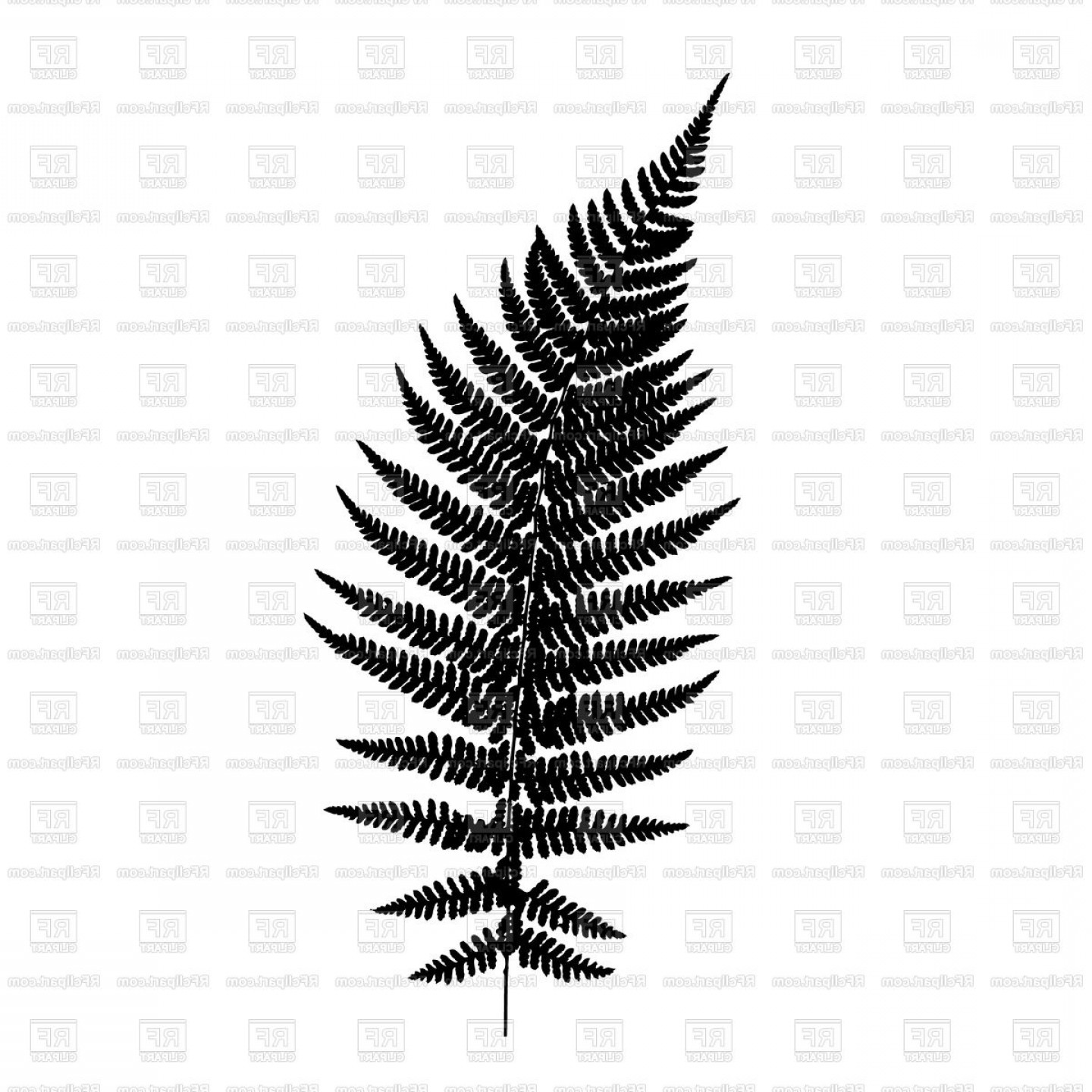 Fern vector clipart svg library download Fern Leaf Silhouette Vector Clipart | SOIDERGI svg library download