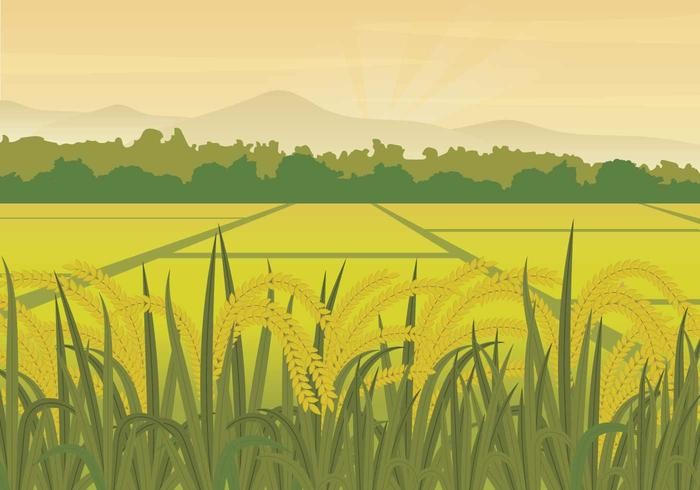 Fields clipart clip freeuse download 75+ Field Clipart | ClipartLook clip freeuse download