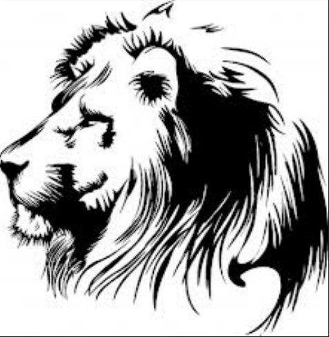 Fierce lion clipart picture stock fierce! | piercings+tattoos | Lion art, Lion clipart, Lion stencil picture stock
