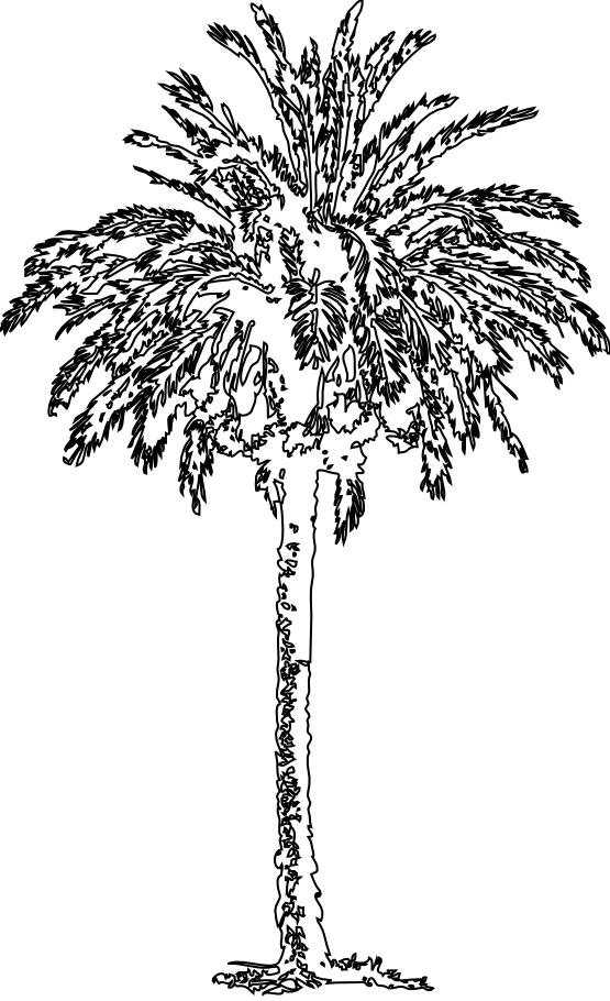 Fig tree clipart black and white picture free stock clipartist.net » Clip Art » date palm SVG picture free stock