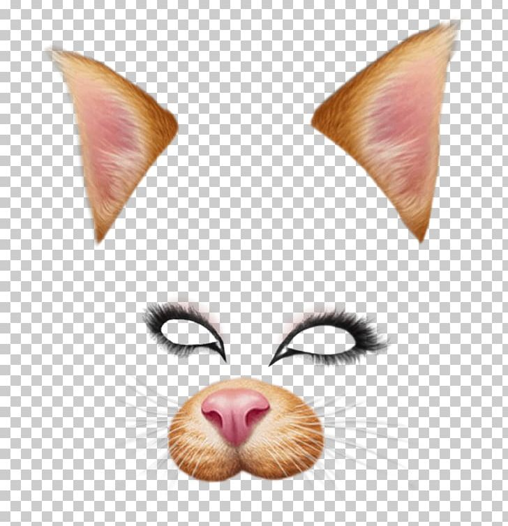 Filter snapchat clipart clipart freeuse Dog Snapchat Photographic Filter PNG, Clipart, Cat, Cat Like Mammal ... clipart freeuse