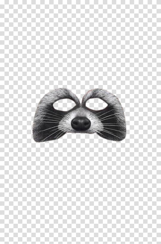 Filtros de fotos clipart graphic black and white stock Snapchat Filters Filtros o efectos de Snapchat, raccoon mask ... graphic black and white stock