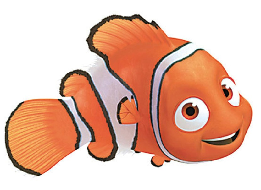 Finding dory clipart free png royalty free stock Collection of Dory clipart | Free download best Dory clipart on ... png royalty free stock